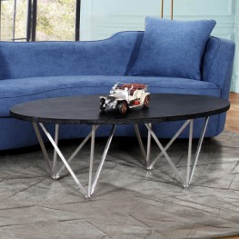 Emerald Contemporary Oval Coffee Table in Brushed Stainless Steel with Black Ash Wood Top