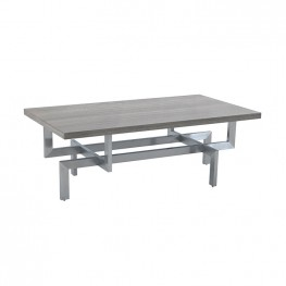 Illusion Gray Wood Coffee Table with Brushed Stainless Steel Base