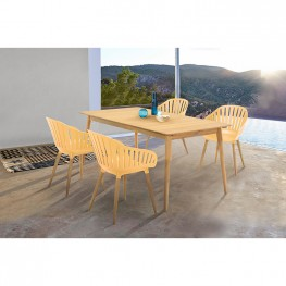 Nassau 5 piece Outdoor Dining Set in Natural Wood Finish Table and Honey Yellow Arm Chairs