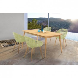 Nassau 5 piece Outdoor Dining Set in Natural Wood Finish Table and Sage Green Arm Chairs
