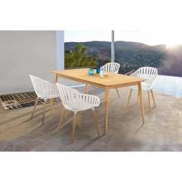 Nassau 5 piece Outdoor Dining Set in Natural Wood Finish Table and Sand Taupe Arm Chairs